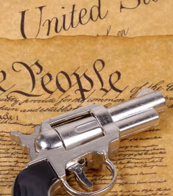opinion based articles on gun control