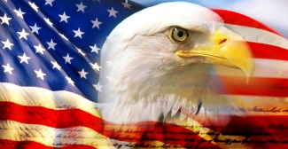 bald eagle head and american flag1