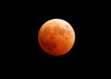 People All Over America Are Freaking Out About This 'Super Blood Moon'
