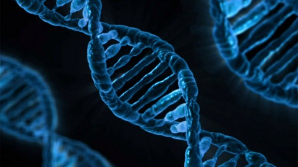 Scientists: Genetically Modified Humans  Can Fight Climate Change