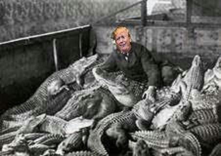 Trump In Swamp